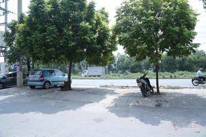 Cận cảnh nơi để xe dưới bóng cây, cửa hé 10 cm giúp bé 3 tuổi thoát chết