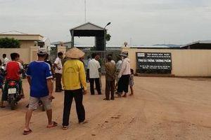 Hàng ngàn người dân lao đao vì… trại gà