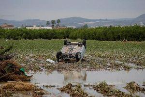 Khủng khiếp mưa lũ cuốn phăng người, ôtô ở Tây Ban Nha