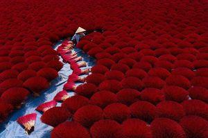 Việt Nam có 4 bức ảnh lọt top những khoảnh khắc ấn tượng nhất thế giới