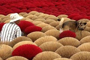 Nhiều doanh nghiệp sản xuất hương nhang đứng trước nguy cơ phá sản