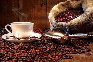Giá cà phê hôm nay 17/9: Tăng mạnh sau khủng hoảng ở Trung Đông