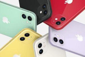 Đơn đặt hàng trước của iPhone 11 tại Trung Quốc tăng kỷ lục