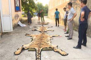 'Ông trùm' buôn bán hổ ở Quảng Ninh sa lưới