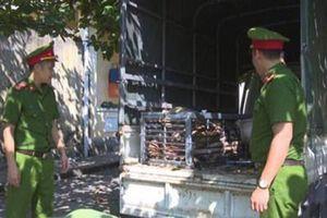 Bắt 2 đối tượng chở con hổ 2,5 tạ từ Nghệ An về Quảng Ninh để nấu cao