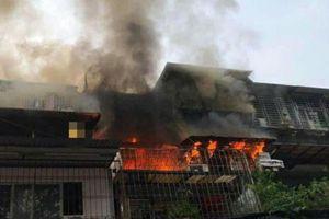 Cháy lớn tại khu tập thể Kim Liên, nhiều người hốt hoảng tháo chạy ra ngoài thoát thân