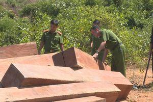 Phát hiện thêm hơn 500m3 gỗ bị cưa hạ ở Đắk Lắk