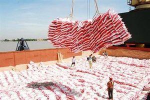 Xuất khẩu gạo 8 tháng tăng khối lượng nhưng giảm gần 15% về giá trị