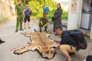 Bắt giữ, khám xét nơi ở của 'ông trùm' buôn bán hổ ở Quảng Ninh