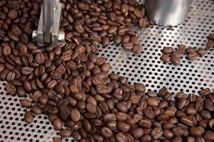 Giá cà phê hồi phục trở lại mốc 34.000 đồng