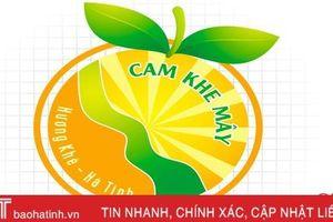 Nhãn hiệu Cam Khe Mây của Hà Tĩnh chính thức được bảo hộ