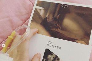 Sau 2 tuần im lặng vì Ahn Jae Hyun kiện đệ đơn ly hôn, Goo Hye Sun tiết lộ đang nhập viện