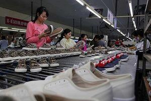 Hợp tác thương mại Việt Nam - Argentina: Nhiều dư địa tăng trưởng