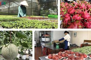 Việt Nam phấn đấu thành trung tâm chuyên sâu về nông sản thế giới