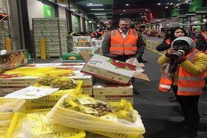 Phi vụ giải cứu lô nhãn Việt đầu tiên tại Australia và các lưu ý cho doanh nghiệp