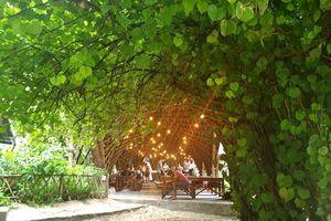 Cát Bà Hải Phòng: Mê mẩn với các đảo đẹp như mơ khi vào thu
