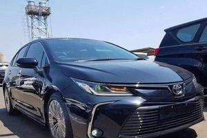 Thực hư việc Corolla mới sắp về Việt Nam: Toyota chính thức lên tiếng