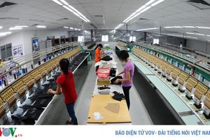 Việt Nam chủ yếu mới xuất khẩu sản phẩm hữu hình với giá trị không cao