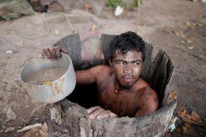 'Vệ binh rừng già' quyết chiến với lâm tặc ở Amazon
