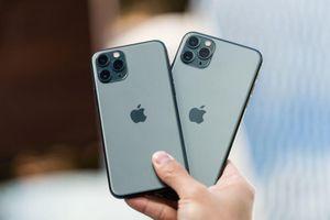 iPhone 11 rớt giá gần 6 triệu sau một ngày về Việt Nam