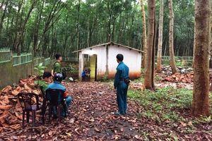 Kẻ sát hại chị dâu ở Bình Phước đã tự sát
