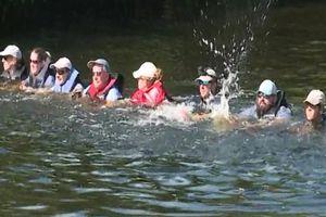 Tạo hàng rào người giải cứu 4 con cá heo mắc kẹt trên kênh