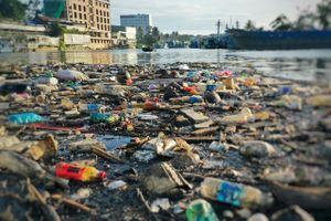 Sông Dương Đông bị bức tử bởi rác thải