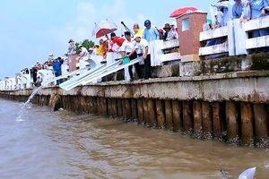 Thả giống tái tạo nguồn lợi thủy sản ở Cà Mau
