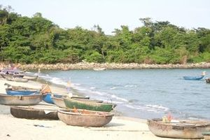 Trải nghiệm bình minh trên vịnh Nam Ô bằng thuyền thúng