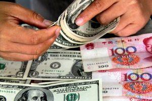 Tỷ giá trung tâm giảm, các ngân hàng giảm giá trao đổi USD