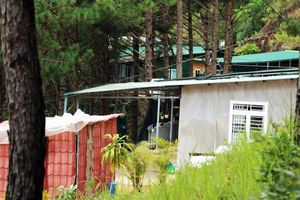 Phát hiện cả chục căn nhà không phép 'mọc' giữa rừng thông Đà Lạt