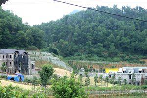 Kỷ luật gần 40 cán bộ huyện Sóc Sơn liên quan vụ 'xẻ thịt' đất rừng