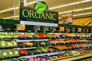 Nông nghiệp hữu cơ-Tham vọng thiếu cơ sở