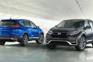 Hé lộ hình ảnh 5 phiên bản nâng cấp của Honda CR-V 2020