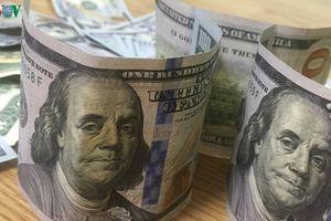 Giá USD phiên đầu tuần ít biến động