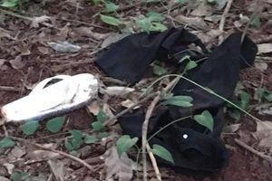 Thiếu nữ 16 tuổi chết gần như lõa thể trong vườn cao su