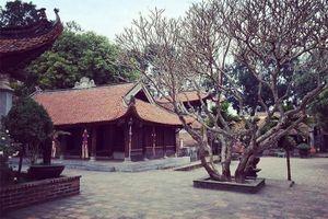 Chùa Vĩnh Nghiêm- Bắc Giang, chốn tổ của Phật giáo Việt Nam