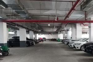 TP. HCM thiếu chỗ để xe ở chung cư