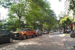 Vi phạm trật tự đô thị trên phố Nguyễn Đình Hoàn: Lực lượng chức năng mơ hồ về luật?