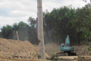 Bình Định: Điều tra vụ doanh nghiệp khai thác đất trái phép