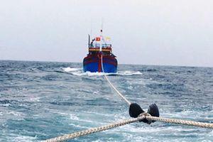Nghệ An: Hơn 20h vượt sóng, lai dắt tàu cá cùng 7 ngư dân vào bờ an toàn