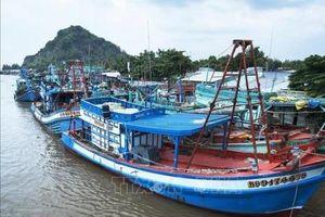 Khắc phục 'thẻ vàng' IUU: Khắc phục điểm yếu để thủy sản lấy lại thẻ xanh