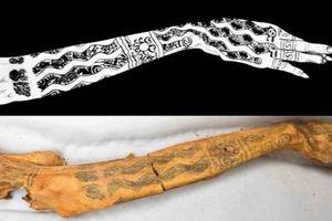 Hình xăm trên những xác ướp cổ đại: Nhện, rắn, túi cần sa… có đủ!