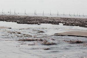 Sóc Trăng: Thiết lập hành lang để bảo vệ hơn 50km bờ biển