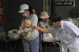 Ngắm nét yên bình ở khu phố Việt lọt top tuyệt vời nhất thế giới