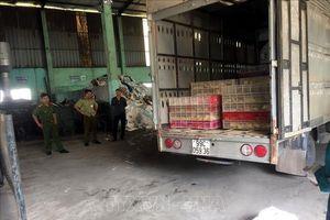 Bắt giữ, tiêu hủy hơn 4.000 con gà nhập lậu