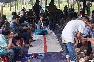 Sới xóc đĩa 'ẩn' trong rừng Quảng Nam
