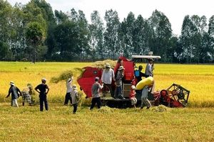 Chủ động xóa vùng trắng của cơ khí nông nghiệp ở ĐBSCL
