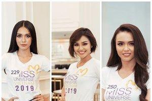 Lộ diện 10 nhan sắc lọt top 60 Hoa hậu Hoàn vũ Việt Nam với học vấn đáng nể phục