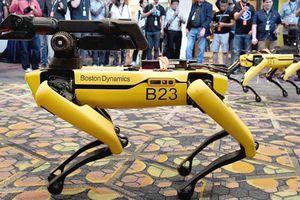 Chó robot được bán với giá ngang một chiếc xe hơi mới